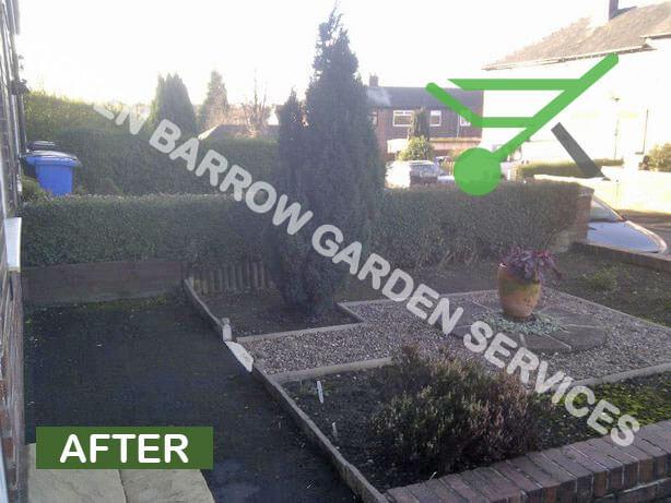 Garden Services Sheffield, Privet Hedge Reduction