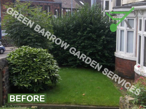 Privet Hedge Maintenance Hillsborough Sheffield Before Photo